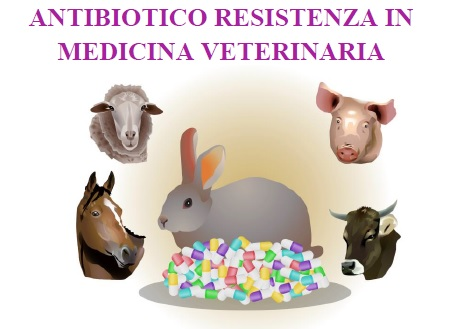 ANTIBIOTICO RESISTENZA IN MEDICINA VETERINARIA